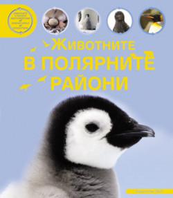 Животните в полярните райони