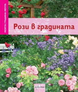 Моята градина мечта: Рози в градината