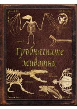 Гръбначните животни