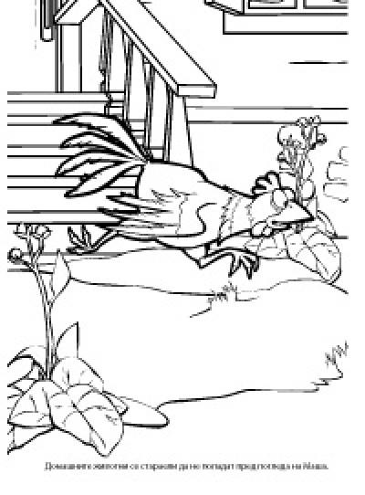 Маша и Мечока: Рисувателна книжка 1